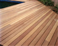 Ipe pool deck, unstained.